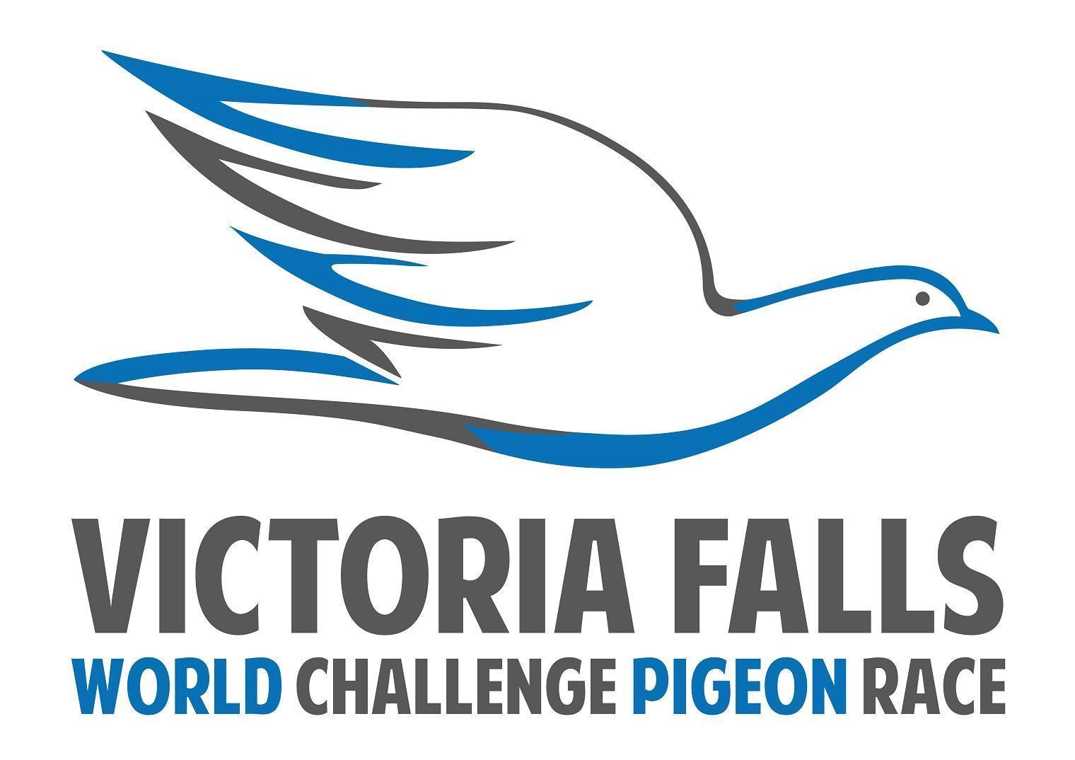 VICTORIA FALLS PERFORMANCE PIGEONS Part 2
